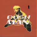 BushMan, Christian Brun Guitariste